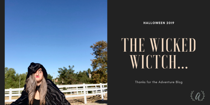 The Wicked Witch…Halloween 2019